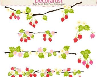 Berry clipart flower All Raspberry art clipart flower