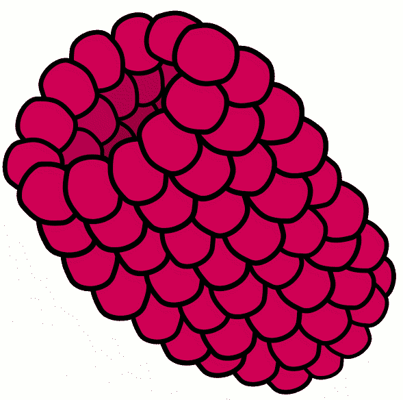 Berry clipart animated Clip Art Clip Raspberry Raspberry