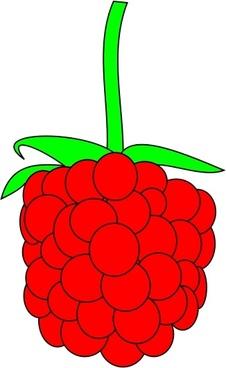 Raspberry clipart vector Vector) vector raspberry Free for