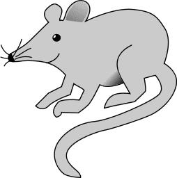 Rat clipart 1 Clipart Rat Free page