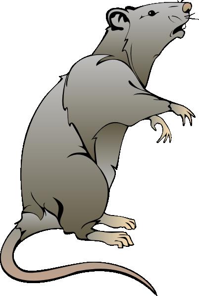 Rat clipart Panda Clipart Rat rat%20clipart Free