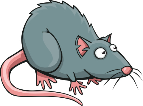 Rat clipart Clip Rat clip Rat art