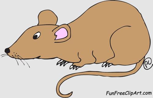 Rat clipart Art clip clip Rat images