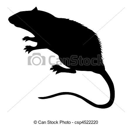 Rat clipart european #5