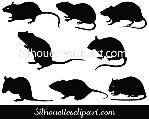 Rat clipart european #6