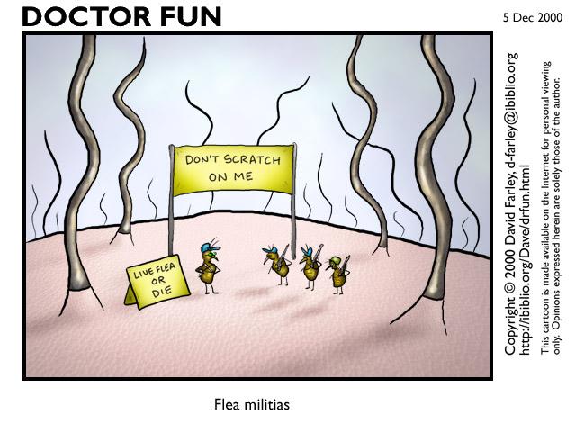 Rat clipart flea #4
