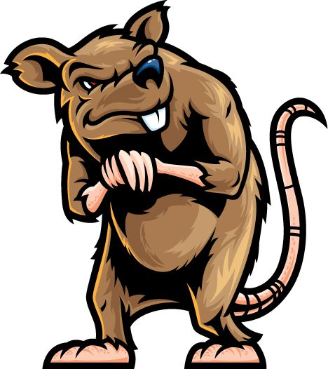 Rat clipart for kid #10