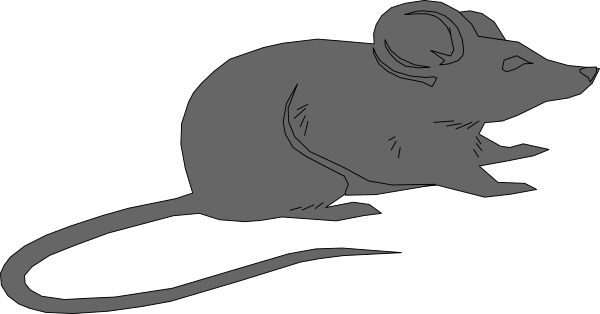 Rat clipart grey mouse #8