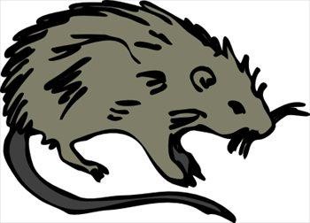 Rat clipart halloween #14