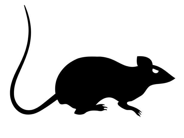 Rat clipart halloween #7
