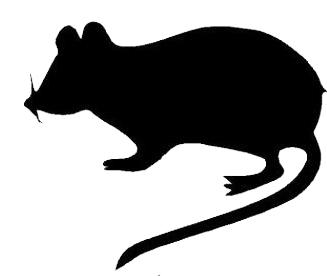 Rat clipart halloween #3