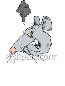 Rat clipart mad #3