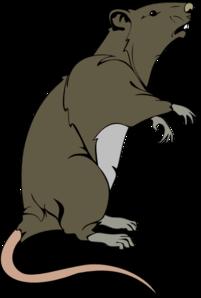 Rat clipart public domain #3