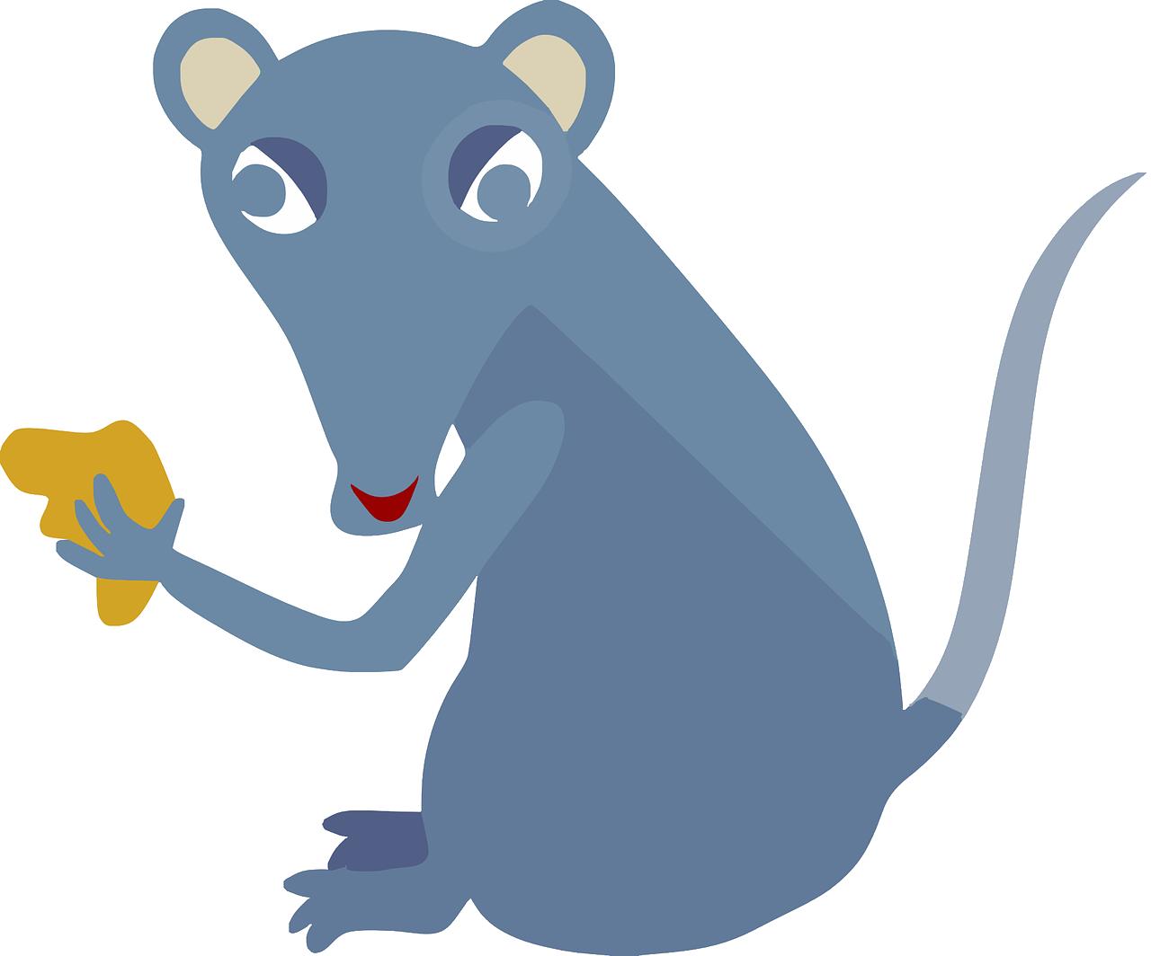 Rat clipart public domain #4
