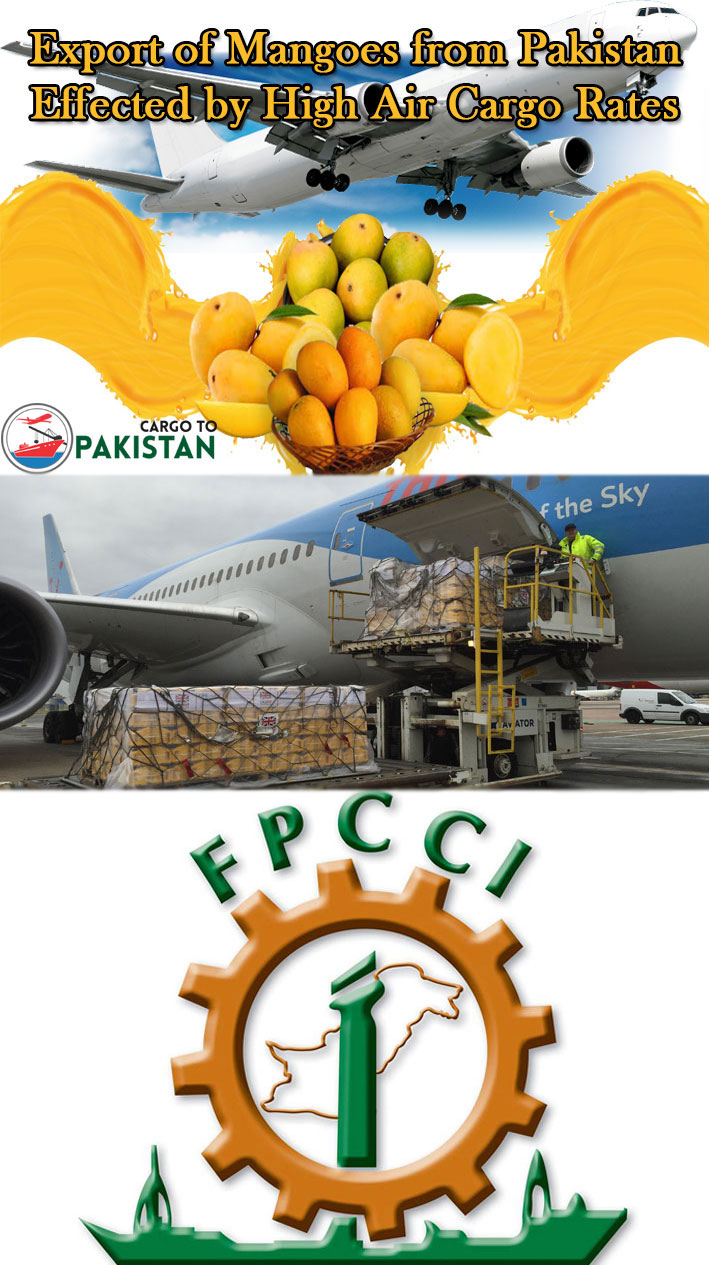 Rate clipart export Export from Cargo http by