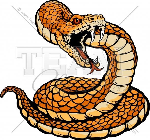Rattlesnake clipart Rattlesnake Coiled Rattlesnake cliparts Clipart