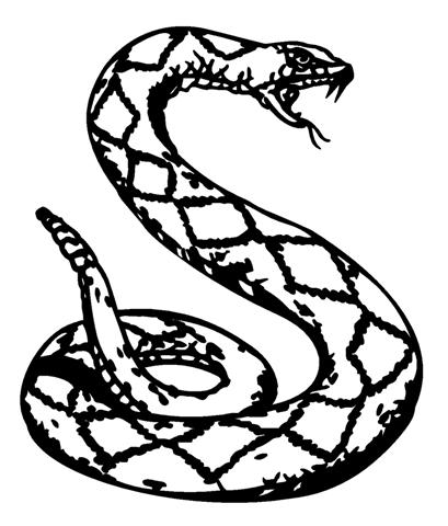 Rattlesnake clipart black and white #15