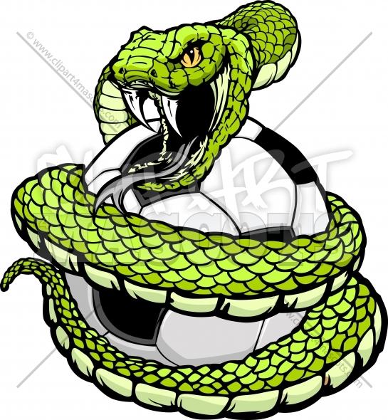 Rattlesnake clipart mean #7
