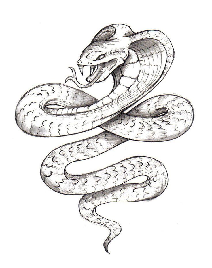 Rattlesnake clipart mean #11