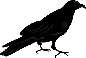 Raven clipart Free Free Clip Panda Images
