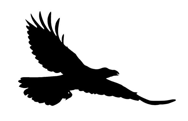 Raven clipart Clipart Flying Clipart Raven Raven