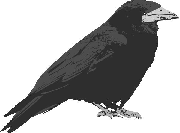 Raven clipart cartoon #8