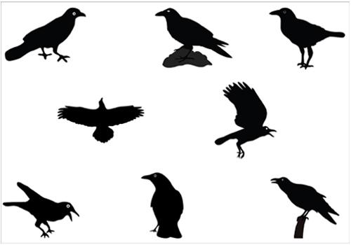 Raven clipart vector #4