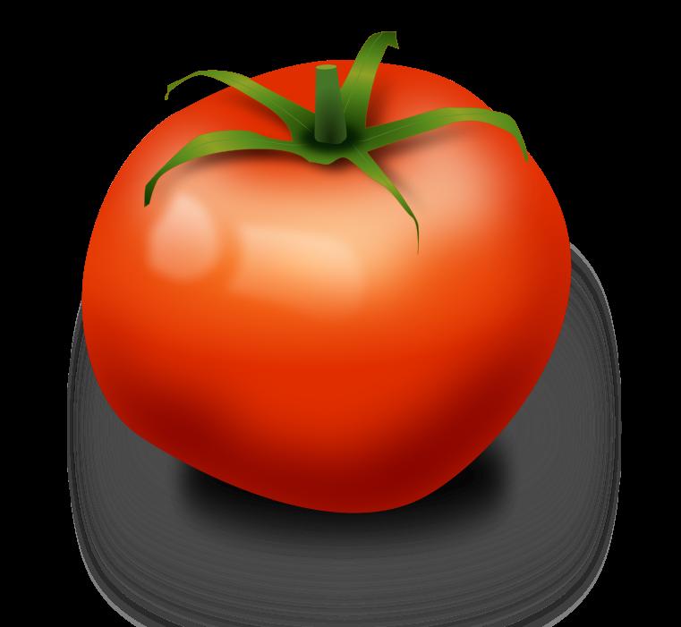 Realistic clipart Clipart clip tomato realistic