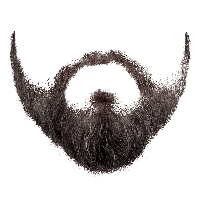Realistic clipart beard FreePNGImg Image images Free Download