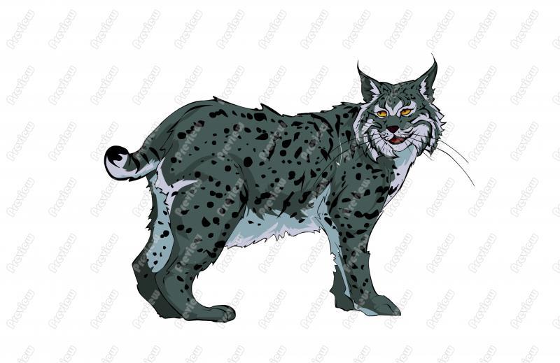 Bobcat clipart realistic Clipart Bobcat Realisitic Free Art