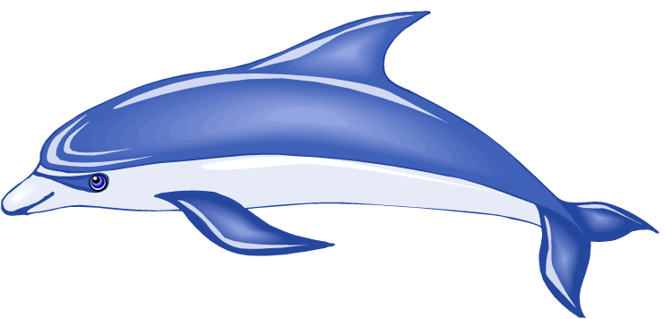 Bottlenose Dolphin clipart cute baby dolphin #2