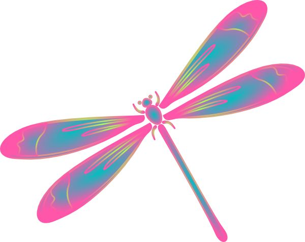 Realistic clipart dragonfly #15