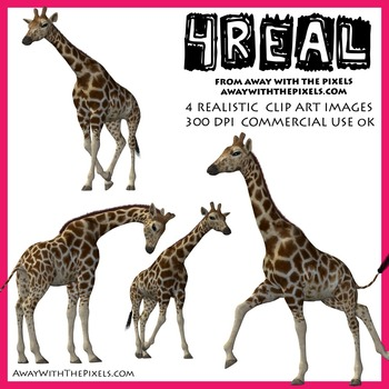 Realistic clipart giraffe #13
