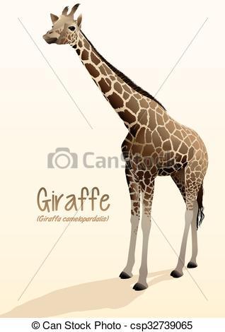 Realistic clipart giraffe #12
