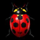 Realistic clipart ladybug #14