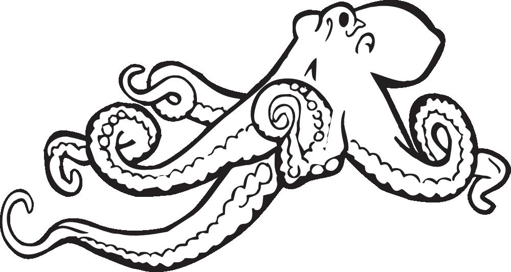 Black clipart octopus Octopus octopus%20clipart%20black%20and%20white Black Clipart White