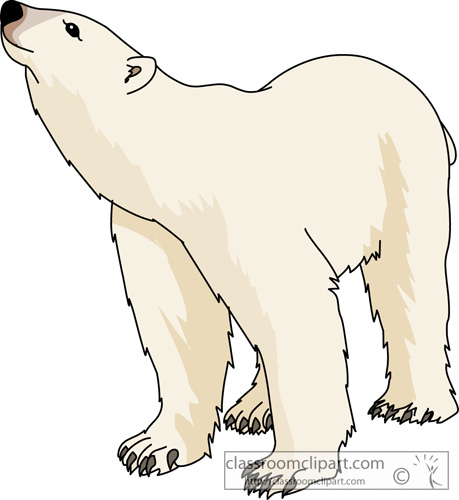 Bear Cub clipart polar animal – Bear On Art Art