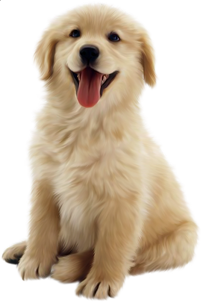Realistic clipart puppy #13