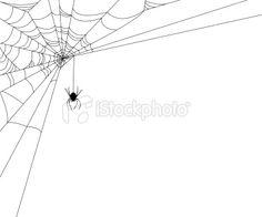 Drawn spider web wet Tattoos on Spider Art with