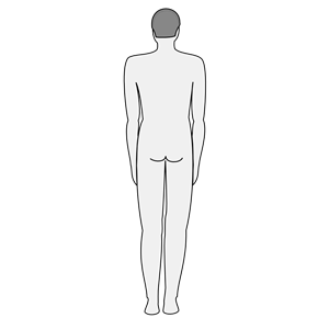 Rear clipart body outline #6