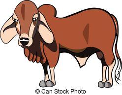 Red Bull clipart brahman bull Brahman clipart Download Brahman #2