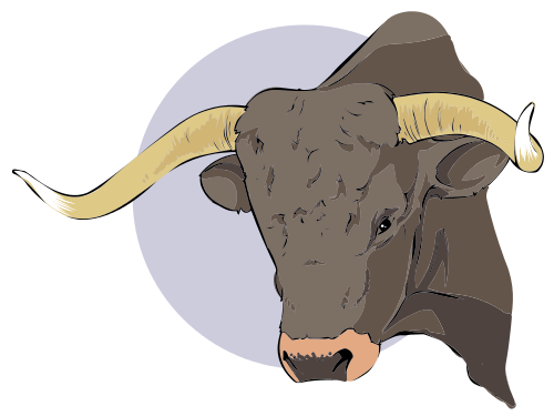 Red Bull clipart brahman bull Brahman clipart Download Brahman #4