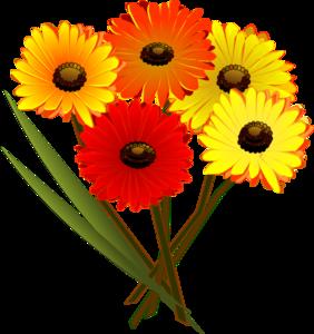 Yellow Flower clipart flowe Orange Clip  Flowers vector