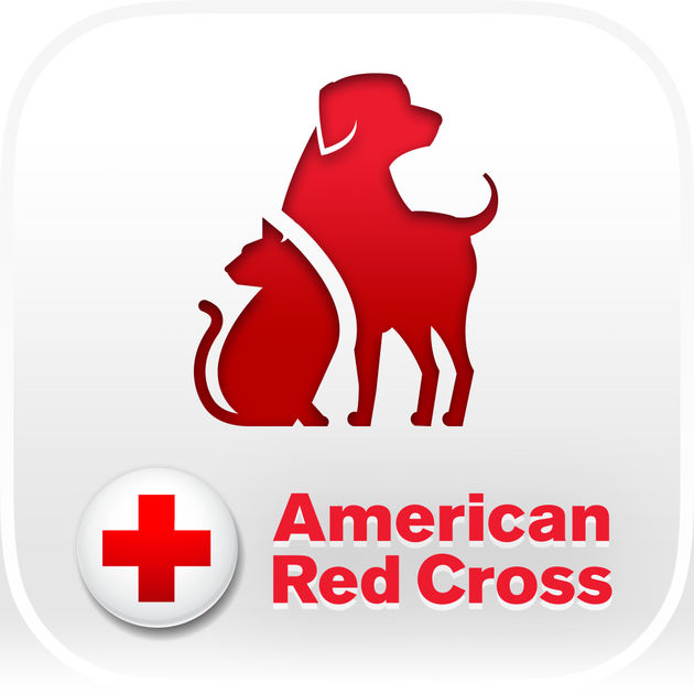 Red Cross clipart medical center The Store First Cross by