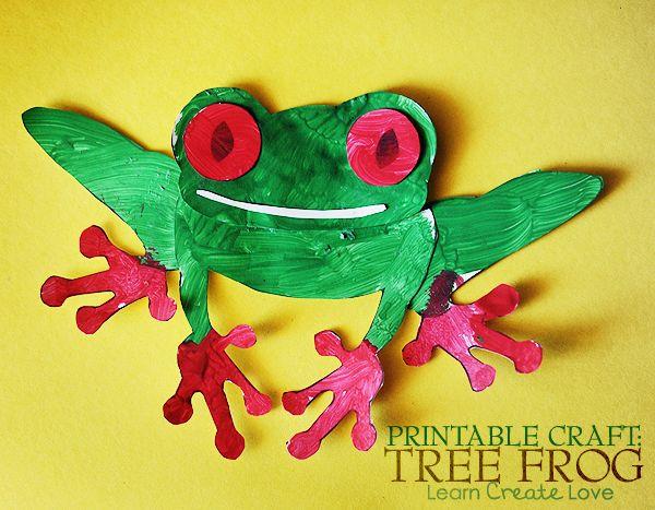 Tree Frog clipart rainforest habitat #4