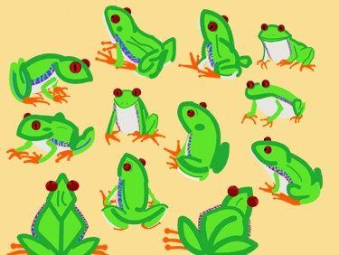 Red Eyed Tree Frog clipart australian FROGS best 106 Pinterest I