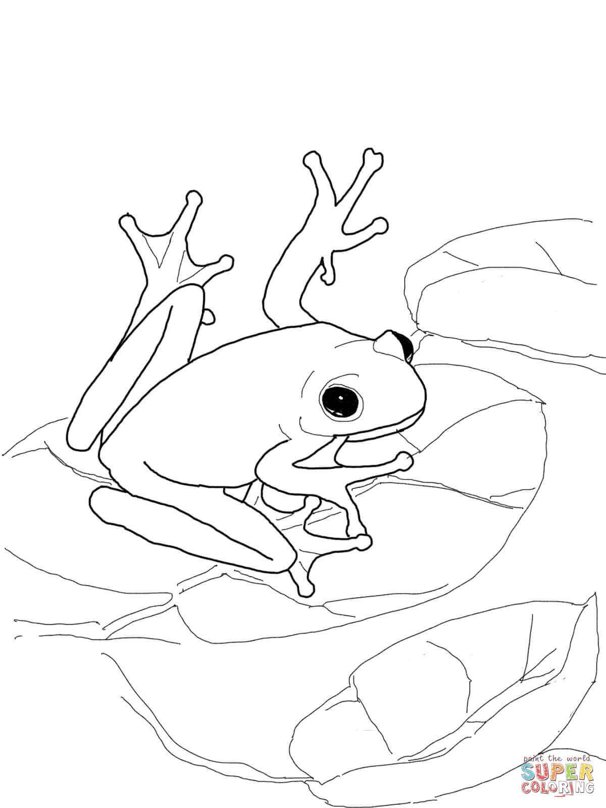 Red Eyed Tree Frog clipart coloring page Coloring page American Pages Tree