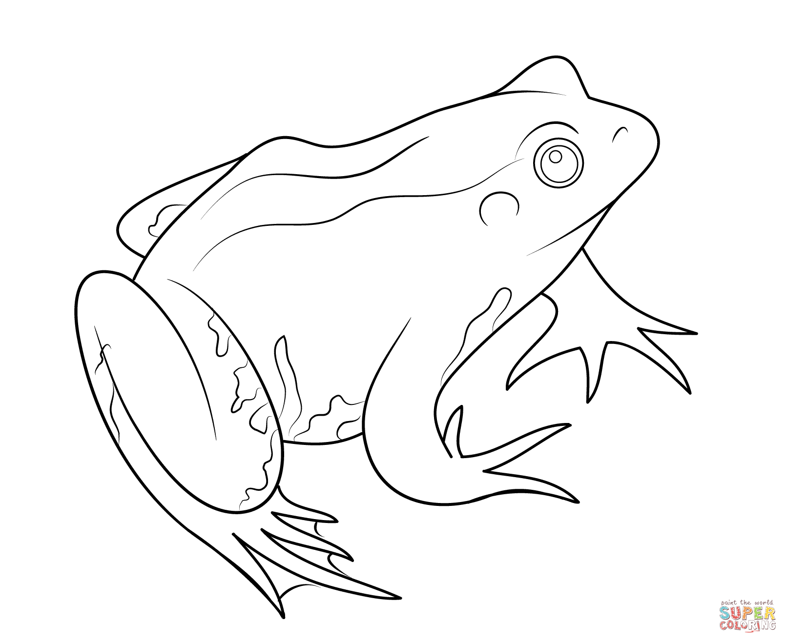 Red Eyed Tree Frog clipart colouring page #9
