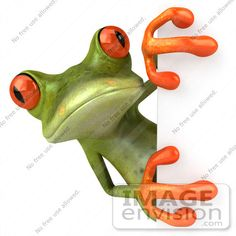 Red Eyed Tree Frog clipart coqui #8