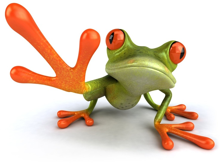 Red Eyed Tree Frog clipart coqui #2